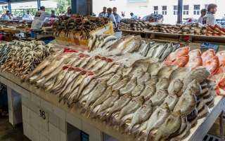 أسعار الأسماك اليوم الإثنين 26 يوليو 2021