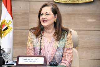 """""""السعيد"""": مصر أكبر متلقٍ للاستثمار الأجنبي المباشر في أفريقيا لعام 2021"""