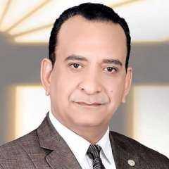 محمود حسن يكتب.. القبة الحديدية والعالم الإفتراضي
